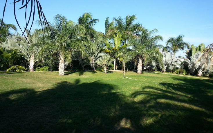 Foto de casa en venta en  , conkal, conkal, yucat?n, 1184133 No. 06