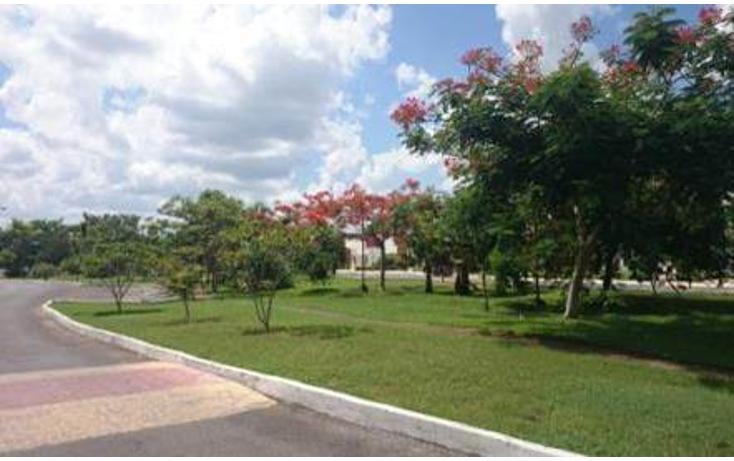 Foto de terreno habitacional en venta en  , conkal, conkal, yucat?n, 1225469 No. 05