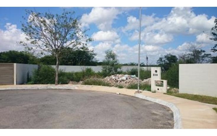 Foto de terreno habitacional en venta en  , conkal, conkal, yucatán, 1239045 No. 04