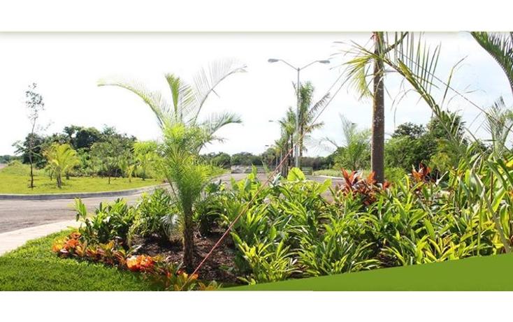 Foto de terreno habitacional en venta en  , conkal, conkal, yucatán, 1261199 No. 04
