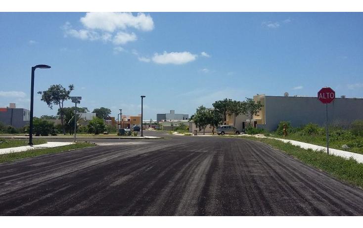 Foto de terreno habitacional en venta en  , conkal, conkal, yucatán, 1261641 No. 02