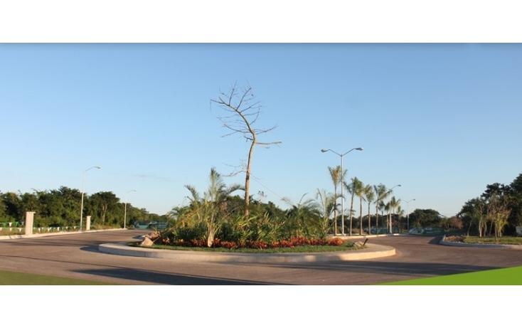Foto de terreno habitacional en venta en  , conkal, conkal, yucatán, 1267501 No. 04