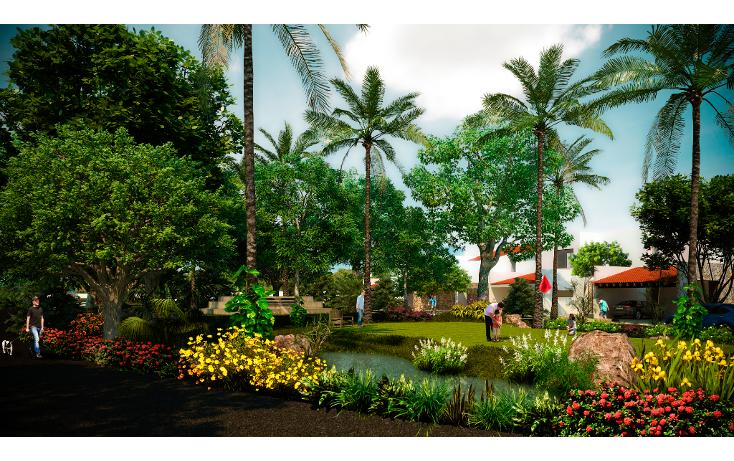 Foto de terreno habitacional en venta en  , conkal, conkal, yucatán, 1273583 No. 04