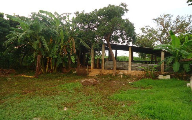 Foto de terreno habitacional en venta en, conkal, conkal, yucatán, 1279841 no 05