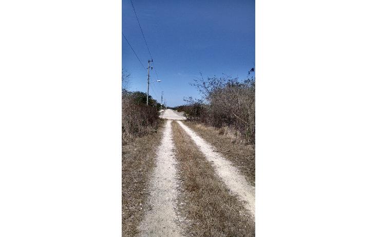 Foto de terreno habitacional en venta en  , conkal, conkal, yucatán, 1284385 No. 02