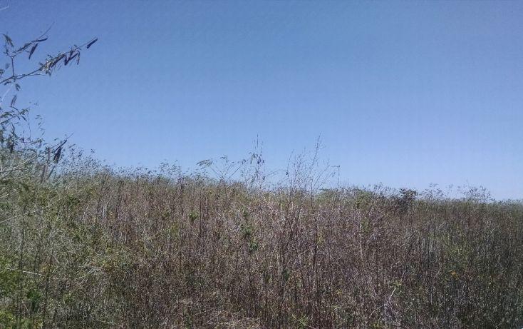Foto de terreno habitacional en venta en, conkal, conkal, yucatán, 1284385 no 03