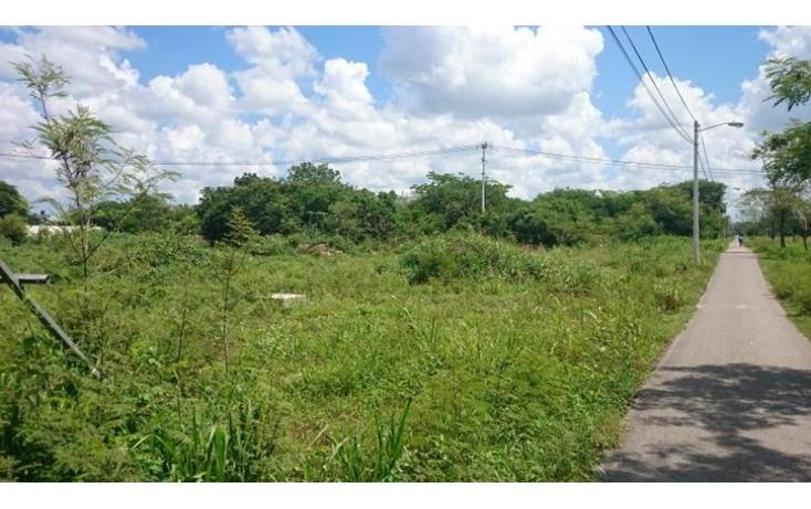 Foto de terreno comercial en venta en  , conkal, conkal, yucatán, 1289057 No. 02