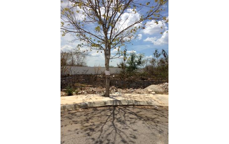 Foto de terreno habitacional en venta en  , conkal, conkal, yucatán, 1295021 No. 03