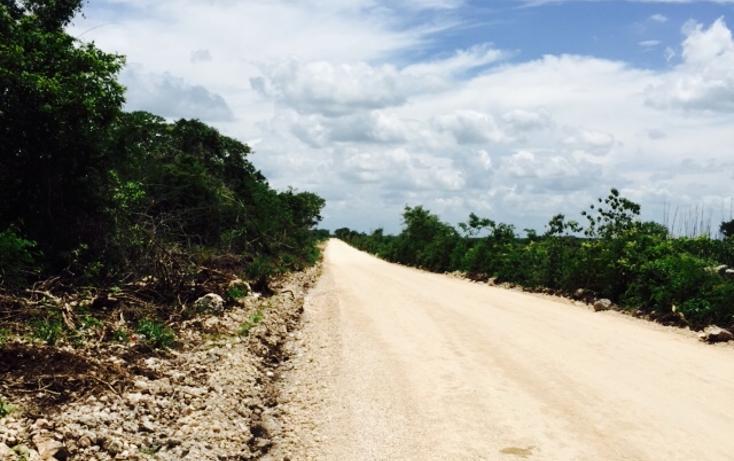 Foto de terreno habitacional en venta en  , conkal, conkal, yucatán, 1300341 No. 05