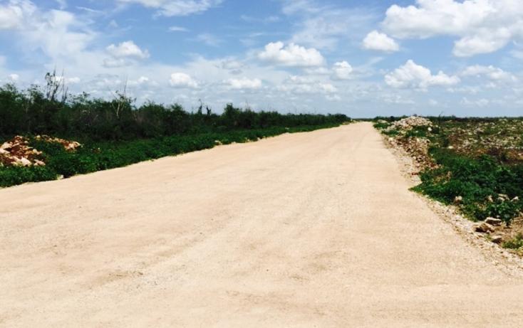 Foto de terreno habitacional en venta en  , conkal, conkal, yucatán, 1300341 No. 06