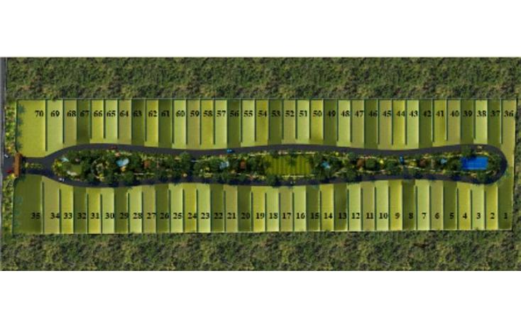 Foto de terreno habitacional en venta en  , conkal, conkal, yucat?n, 1300797 No. 04