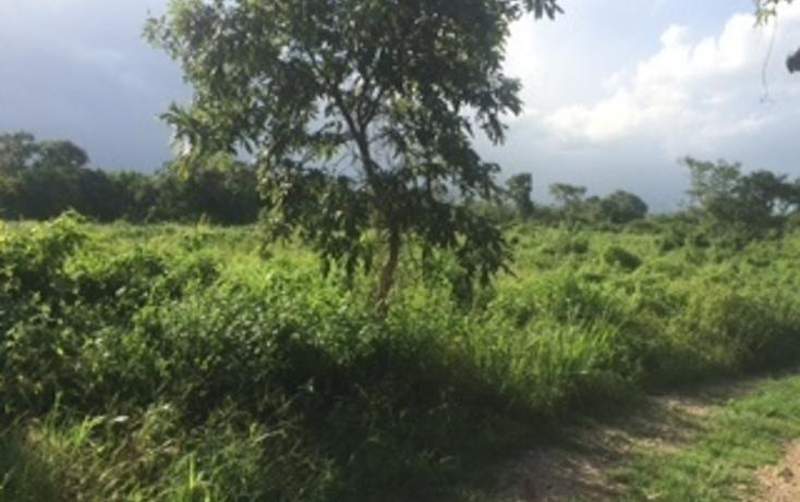 Foto de terreno habitacional en venta en  , conkal, conkal, yucat?n, 1315011 No. 01