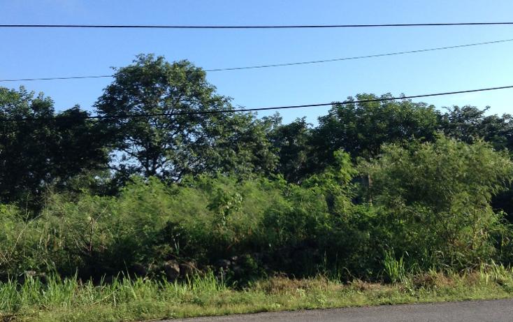 Foto de terreno comercial en venta en  , conkal, conkal, yucat?n, 1374363 No. 02