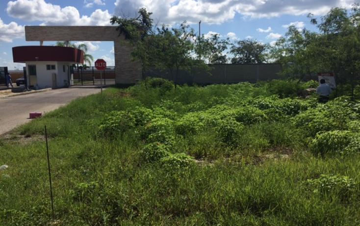 Foto de terreno habitacional en venta en  , conkal, conkal, yucat?n, 1459305 No. 01