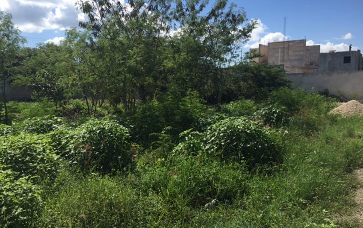 Foto de terreno habitacional en venta en  , conkal, conkal, yucat?n, 1459305 No. 04