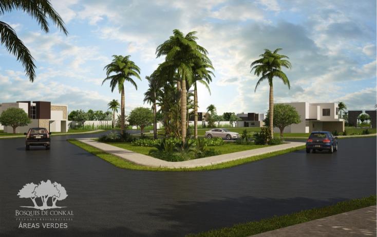 Foto de terreno habitacional en venta en  , conkal, conkal, yucatán, 1462359 No. 03