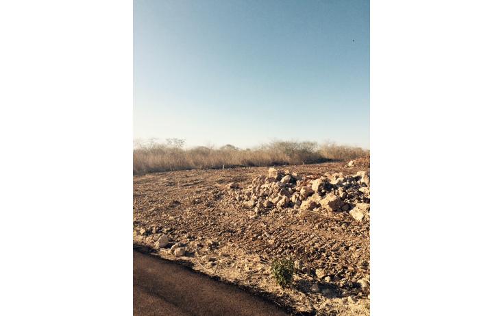 Foto de terreno habitacional en venta en  , conkal, conkal, yucat?n, 1466623 No. 03