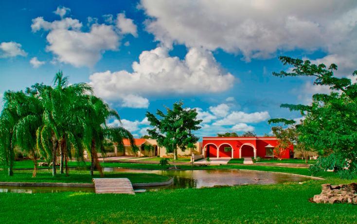 Foto de casa en venta en  , conkal, conkal, yucatán, 1556506 No. 05
