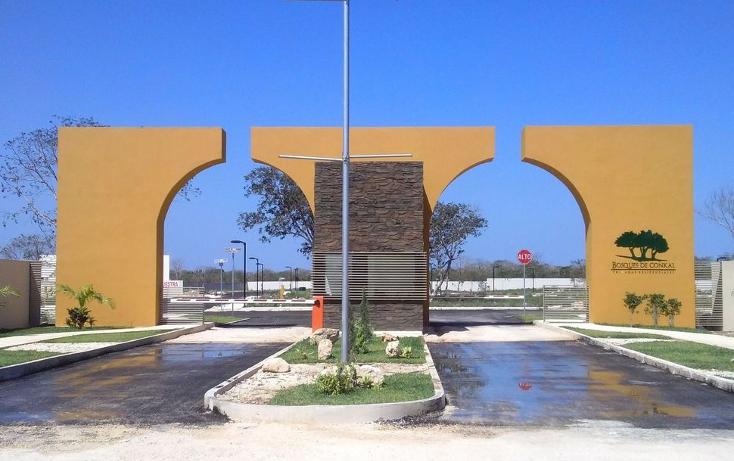 Foto de terreno habitacional en venta en  , conkal, conkal, yucatán, 1613556 No. 01