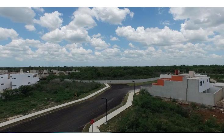 Foto de terreno habitacional en venta en  , conkal, conkal, yucatán, 1613556 No. 02