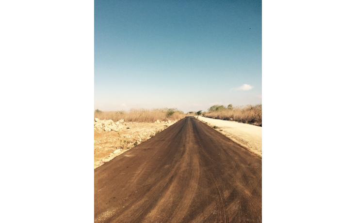 Foto de terreno habitacional en venta en  , conkal, conkal, yucatán, 1662128 No. 04