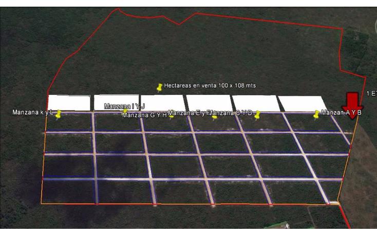 Foto de terreno habitacional en venta en  , conkal, conkal, yucat?n, 1666004 No. 01