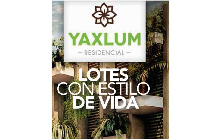 Foto de terreno habitacional en venta en  , conkal, conkal, yucat?n, 1684816 No. 10