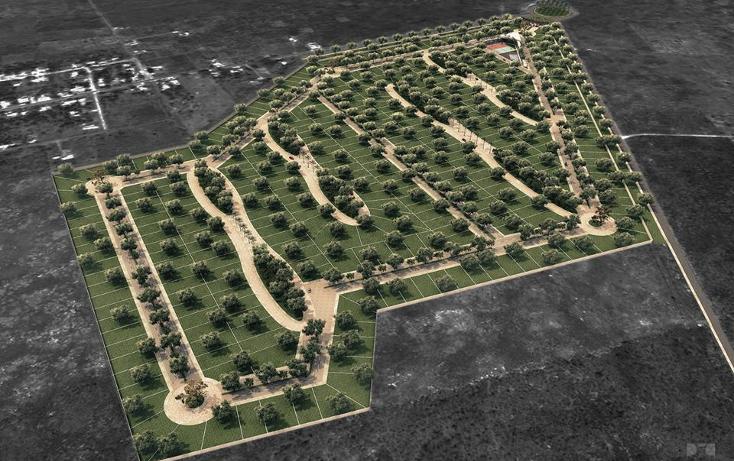 Foto de terreno habitacional en venta en  , conkal, conkal, yucat?n, 1684816 No. 11