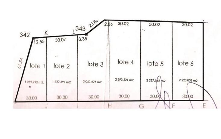 Foto de terreno habitacional en venta en  , conkal, conkal, yucatán, 1694286 No. 02