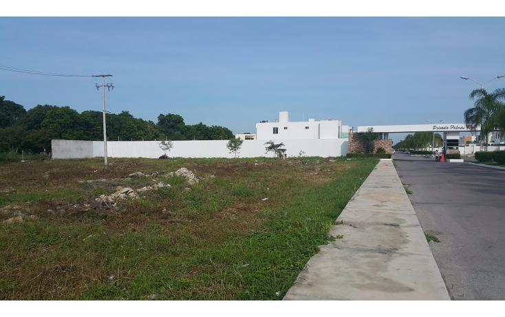 Foto de terreno habitacional en venta en  , conkal, conkal, yucatán, 1736674 No. 04