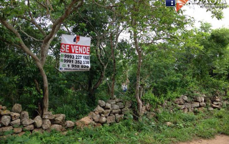 Foto de terreno habitacional en venta en  , conkal, conkal, yucat?n, 1757958 No. 02