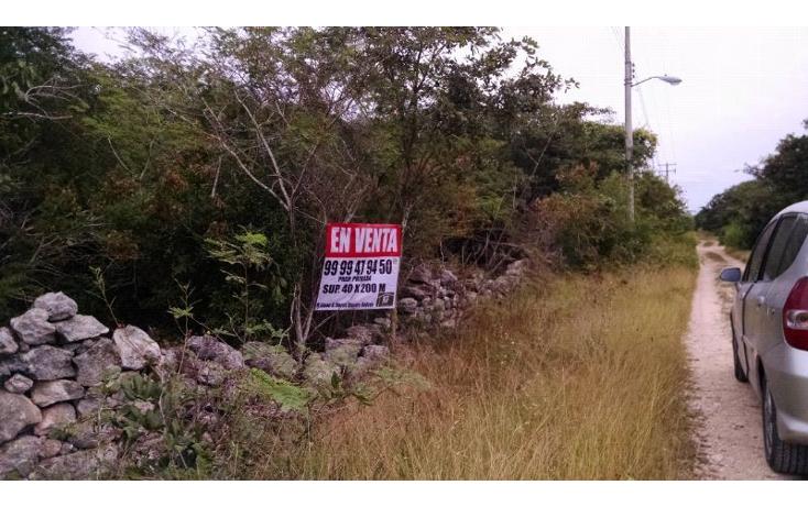 Foto de terreno habitacional en venta en  , conkal, conkal, yucatán, 1759362 No. 01