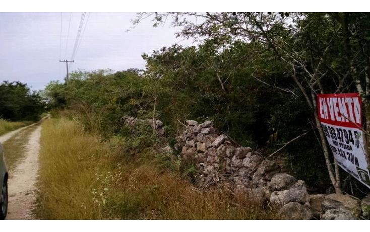 Foto de terreno habitacional en venta en  , conkal, conkal, yucatán, 1759362 No. 02