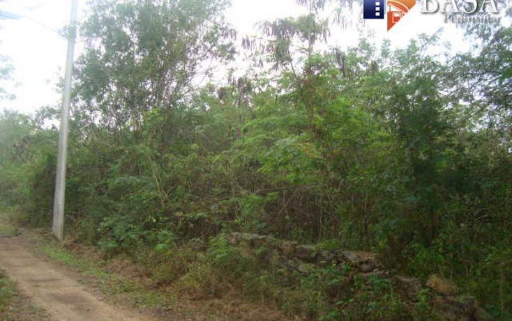 Foto de terreno habitacional en venta en  , conkal, conkal, yucat?n, 1760998 No. 03