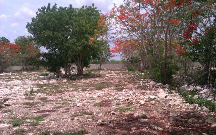 Foto de terreno habitacional en venta en, conkal, conkal, yucatán, 1787192 no 01