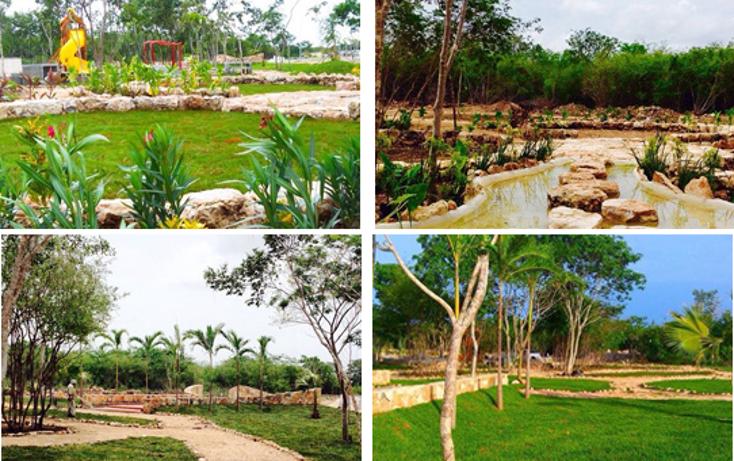 Foto de terreno habitacional en venta en  , conkal, conkal, yucatán, 1787842 No. 02