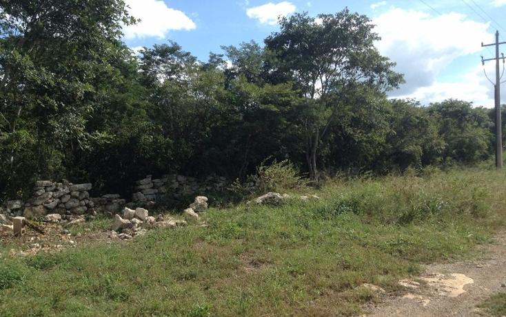 Foto de terreno habitacional en venta en  , conkal, conkal, yucat?n, 1860474 No. 03