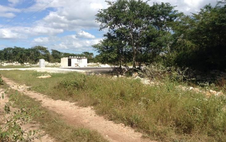 Foto de terreno habitacional en venta en  , conkal, conkal, yucat?n, 1860474 No. 05