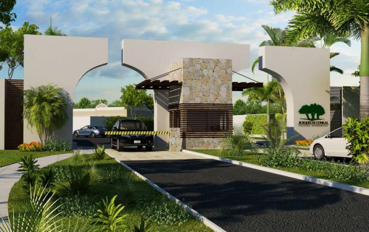 Foto de terreno habitacional en venta en, conkal, conkal, yucatán, 1939230 no 01