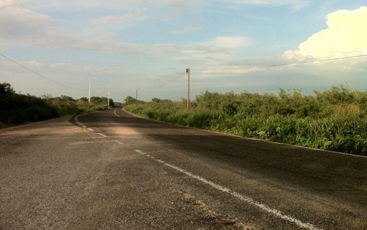 Foto de terreno comercial en venta en  , conkal, conkal, yucatán, 2636444 No. 05