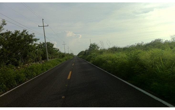 Foto de terreno comercial en venta en  , conkal, conkal, yucatán, 2636444 No. 06