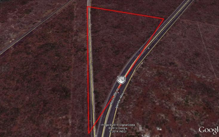 Foto de terreno comercial en venta en  , conkal, conkal, yucatán, 2636444 No. 07