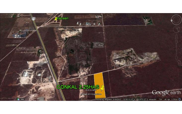 Foto de terreno habitacional en venta en  , conkal, conkal, yucat?n, 938399 No. 09