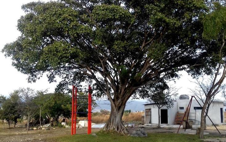 Foto de terreno habitacional en venta en  1, granjas club campestre, tuxtla gutiérrez, chiapas, 2040428 No. 06
