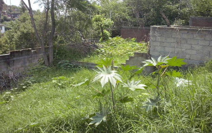 Foto de terreno habitacional en venta en conocido conocido, lomas de atzingo, cuernavaca, morelos, 1763006 No. 02