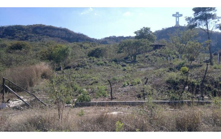 Foto de terreno habitacional en venta en  , coquelequixtlan, tuxtla gutiérrez, chiapas, 833953 No. 02