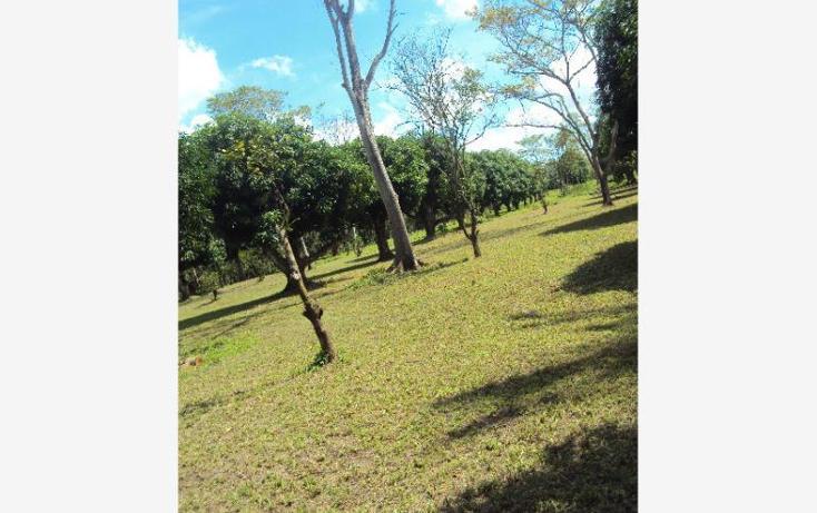 Foto de terreno habitacional en venta en  , coronel traconis 1ra sección (la isla), centro, tabasco, 471789 No. 07