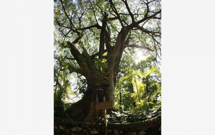 Foto de terreno comercial en venta en, coronilla del ocote, zapopan, jalisco, 2033380 no 16