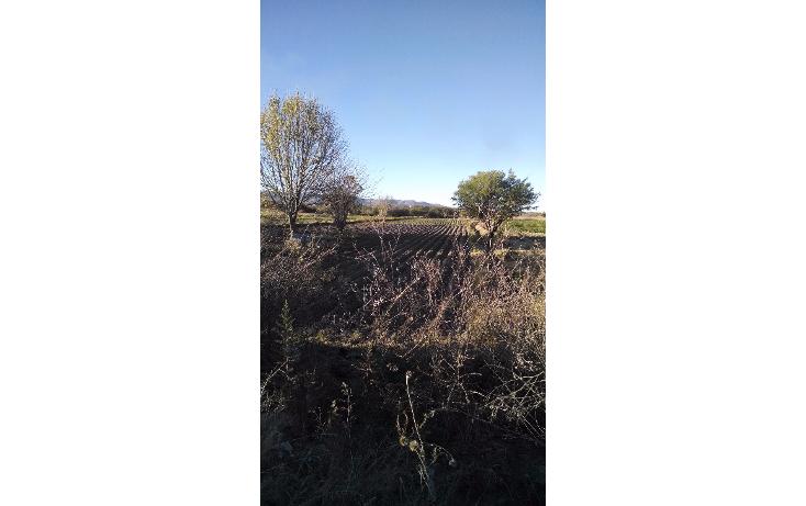 Foto de rancho en venta en  , corral de barrancos, jesús maría, aguascalientes, 1772714 No. 02