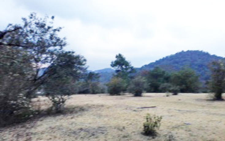 Foto de terreno habitacional en venta en  , corral de piedra, san crist?bal de las casas, chiapas, 592804 No. 06